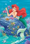 Ariel avec une fleur