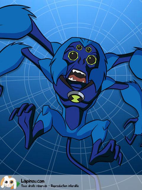 Arachno-singe