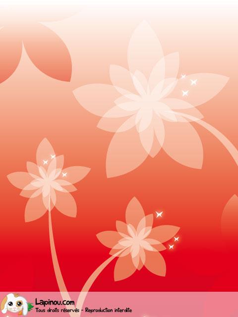 Fleurs rouges pour Maman