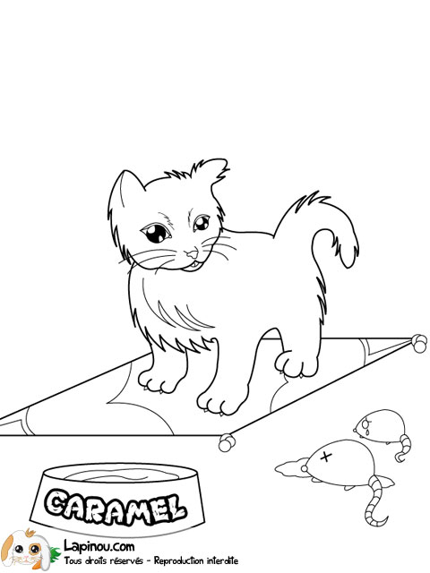 Coloriage Chat Souris.Chat Et Souris Coloriages A Imprimer Pour Les Enfants Sur