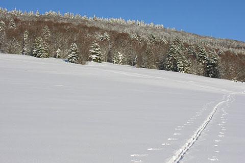 Etendue de neige