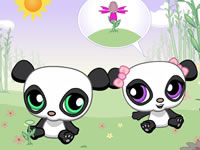 Un cadeau pour mademoiselle panda