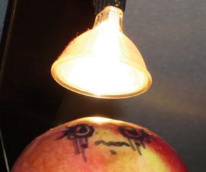 Madame Pomme passant des examens