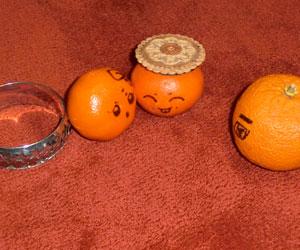 Monsieur Orange et ses enfants