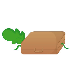 Carry dans la valise
